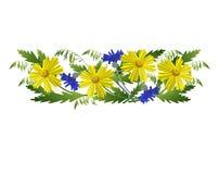 Κίτρινα και μπλε λουλούδια με spikelets Στοκ Φωτογραφίες