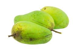 Κίτρινα και πράσινα φρούτα μάγκο που απομονώνονται Στοκ Εικόνα