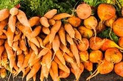 Κίτρινα καρότα και τεύτλα Στοκ εικόνα με δικαίωμα ελεύθερης χρήσης