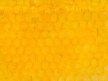 Κίτρινα κυψελωτά κύτταρα κάτω από το φρέσκο μέλι Στοκ εικόνα με δικαίωμα ελεύθερης χρήσης