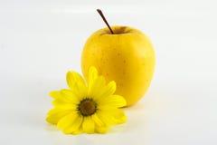 Κίτρινα μήλα με τη μαργαρίτα στο άσπρο υπόβαθρο Στοκ Φωτογραφία