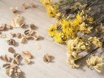 Κίτρινα ξηρά λουλούδια στο αγροτικό ξύλινο υπόβαθρο σανίδων στοκ εικόνες