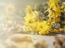 Κίτρινα ξηρά λουλούδια στο αγροτικό ξύλινο υπόβαθρο σανίδων στοκ εικόνα με δικαίωμα ελεύθερης χρήσης