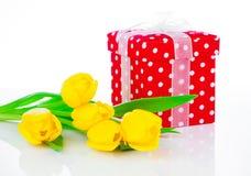 Κίτρινα λουλούδια τουλιπών με το κόκκινο κιβώτιο δώρων Πόλκα-σημείων Στοκ εικόνα με δικαίωμα ελεύθερης χρήσης