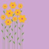 Κίτρινα λουλούδια υποβάθρου Στοκ εικόνα με δικαίωμα ελεύθερης χρήσης