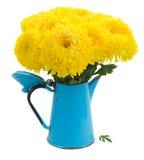 Κίτρινα λουλούδια mum Στοκ εικόνα με δικαίωμα ελεύθερης χρήσης