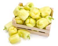 Κίτρινα πιπέρια κουδουνιών (καψικό annuum) Στοκ Φωτογραφίες