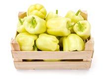 Κίτρινα πιπέρια κουδουνιών (καψικό annuum) Στοκ Εικόνα