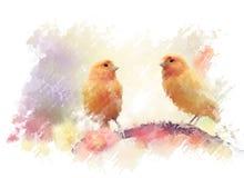 Κίτρινα πουλιά Watercolor Στοκ εικόνες με δικαίωμα ελεύθερης χρήσης