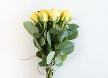 Κίτρινα τριαντάφυλλα που δένονται με την καφετιά σειρά Στοκ Εικόνες
