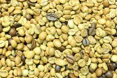 Κίτρινα φασόλια καφέ Στοκ φωτογραφία με δικαίωμα ελεύθερης χρήσης