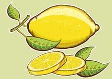 Κίτρινα φρέσκα λεμόνια τα πράσινα φύλλα που απομονώνονται με Στοκ εικόνες με δικαίωμα ελεύθερης χρήσης