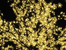 Κίτρινα φω'τα νεράιδων γύρω από ένα δέντρο Στοκ Εικόνες