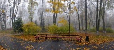 Κίτρινα φύλλα σε έναν πάγκο στο πάρκο Στοκ εικόνες με δικαίωμα ελεύθερης χρήσης