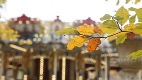 Κίτρινα φύλλα φθινοπώρου με εύθυμος-πηγαίνω-στρογγυλό στο υπόβαθρο απόθεμα βίντεο