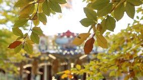 Κίτρινα φύλλα φθινοπώρου με εύθυμος-πηγαίνω-στρογγυλό στο υπόβαθρο φιλμ μικρού μήκους