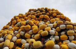 Κίτρινα ψάρια καθαρά Στοκ φωτογραφία με δικαίωμα ελεύθερης χρήσης