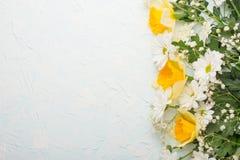 Κίτρινα daffodils με τα άσπρα crisands σε ένα ξύλινο υπόβαθρο, τοπ άποψη, με το κενό διάστημα για το γράψιμο ή τη διαφήμιση στοκ φωτογραφίες