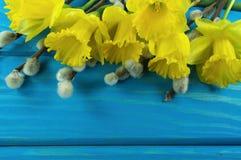 Κίτρινα daffodils Στοκ φωτογραφία με δικαίωμα ελεύθερης χρήσης