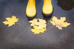 Κίτρινες λαστιχένιες μπότες σε μια λακκούβα του φθινοπώρου Στοκ Εικόνες
