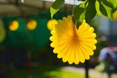 Κίτρινες εορταστικές διακοσμήσεις κομμάτων θερινών κήπων Στοκ φωτογραφία με δικαίωμα ελεύθερης χρήσης