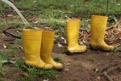 Κίτρινες μπότες βροχής σε έναν βοτανικό κήπο Στοκ Εικόνες
