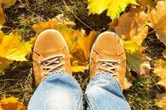 Κίτρινες μπότες σουέτ Στοκ εικόνα με δικαίωμα ελεύθερης χρήσης