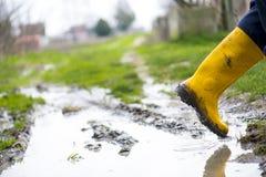 Κίτρινες μπότες Στοκ Φωτογραφία