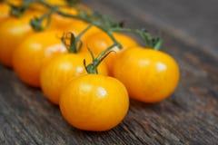 Κίτρινες ντομάτες κερασιών Στοκ φωτογραφίες με δικαίωμα ελεύθερης χρήσης