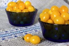 Κίτρινες ντομάτες Στοκ φωτογραφία με δικαίωμα ελεύθερης χρήσης