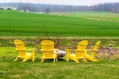 Κίτρινες ξύλινες έδρες γύρω από το κοίλωμα πυρκαγιάς στον τομέα στοκ εικόνες