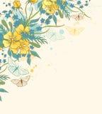 Κίτρινες λουλούδια και πεταλούδες Στοκ Φωτογραφίες