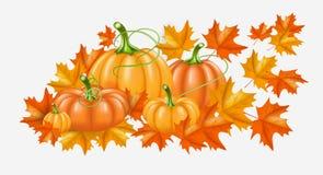 Κίτρινες, πορτοκαλιές κολοκύθες φθινοπώρου και φωτεινά φύλλα πτώσης στο άσπρο υπόβαθρο Διανυσματική απεικόνιση για την αφίσα, κάρ Στοκ Εικόνες