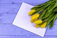 Κίτρινες τουλίπες Πάσχας Στοκ Εικόνες