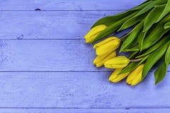 Κίτρινες τουλίπες Πάσχας Στοκ φωτογραφία με δικαίωμα ελεύθερης χρήσης