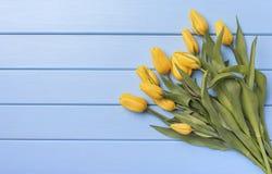 Κίτρινες τουλίπες στους μπλε πίνακες Στοκ Εικόνα