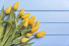 Κίτρινες τουλίπες στους μπλε πίνακες Στοκ Εικόνες