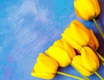 Κίτρινες τουλίπες Στοκ φωτογραφία με δικαίωμα ελεύθερης χρήσης