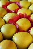 Κίτρινες χρυσές σειρές μήλων Στοκ Φωτογραφίες