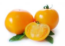 Κίτρινες persimmon ντομάτες Στοκ εικόνες με δικαίωμα ελεύθερης χρήσης