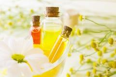 Κίτρινη έννοια Aromatherapy Στοκ Εικόνα