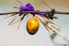 Κίτρινη ένωση αυγών Πάσχας στο δέντρο Πάσχας Στοκ φωτογραφίες με δικαίωμα ελεύθερης χρήσης