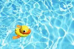 Κίτρινη λαστιχένια πάπια στο νερό στην καυτή ηλιόλουστη ημέρα Θερινό υπόβαθρο για το ταξίδι και τις διακοπές Διακοπές ειδυλλιακές Στοκ Εικόνα