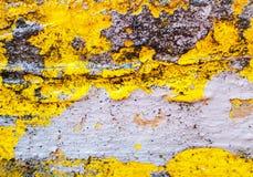 Κίτρινη και γκρίζα σύσταση ενός υποβάθρου grunge μεγάλη σύσταση Χρήσιμος ως σκηνικό στοκ φωτογραφίες