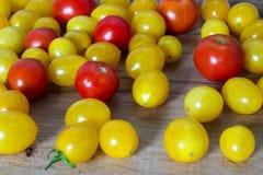 Κίτρινη κόκκινη ντομάτα Στοκ Εικόνα