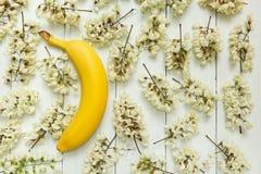 Κίτρινη μπανάνα σε ένα υπόβαθρο των άσπρων λουλουδιών ακακιών στοκ εικόνα