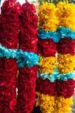 Κίτρινη, μπλε, κόκκινος, πορφυρός, η Magenta χρωμάτισε τη γιρλάντα των λουλουδιών Στοκ Εικόνα