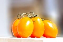 Κίτρινη ντομάτα συστάδων Στοκ Φωτογραφία