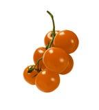 Κίτρινη ντομάτα Στοκ Φωτογραφίες