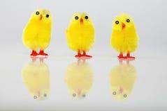 Κίτρινη ομάδα νεοσσών Πάσχας Στοκ Φωτογραφίες